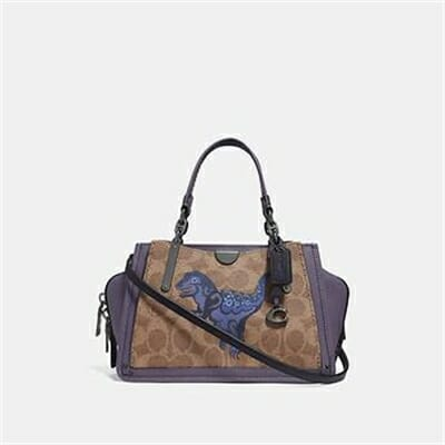 Fashion 4 Coach DREAMER 21 IN SIGNATURE CANVAS WITH REXY BY ZHU JINGYI