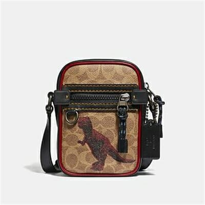 Fashion 4 Coach DYLAN 10 IN SIGNATURE COATED WITH REXY BY SUI JIANGUO