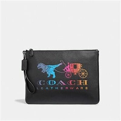Fashion 4 Coach LARGE WRISTLET 30 WITH REXY AND CARRIAGE