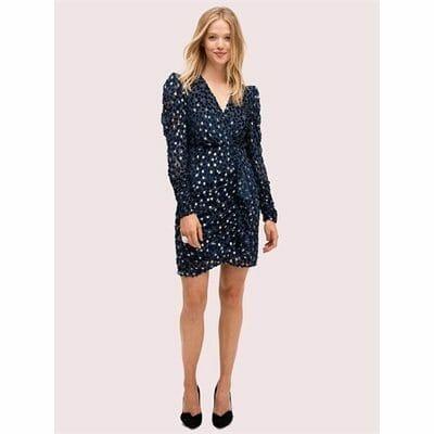 Fashion 4 - scatter dot velvet dress